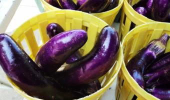 Урожай баклажанов @Monique Deliz, Flickr